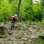 Rock Garden in Bike Park Pohorje