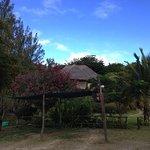 casa cabana guesthouses