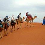 Morocco Camel Trekking Merzouga - Private Day Tours