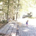 Camp Site P17