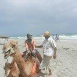 Non fate la passeggiata sul cammello in spiaggia:soldi buttati dura pochissimo.