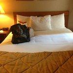 Foto de Hawthorn Suites by Wyndham Panama City Beach FL