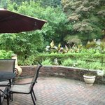 Patio/ Gardens