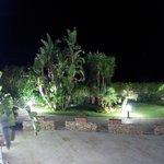 Il giardino alla sera