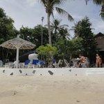 Beach and restaurant Milky Bay