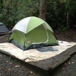 3 person tent on tent pod