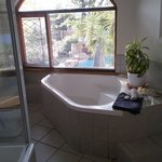 the fabulous bathroom with a view!
