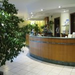 The front desk area (the plants were a nice touch)