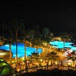 Hotel Iz Flower by night