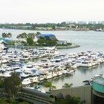 Marina & Bay