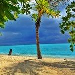 вид на пляж с порога Бунгало