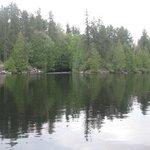 End of Wigwam lake.