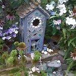 Fairies Outback House