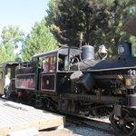 Sumpter train