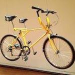 "The side-by-side ""Buddy Bike"""