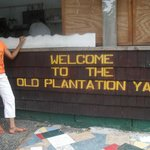 me , at the Old Plantation Yard in Vieux Fort St Lucia
