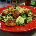 Blackened scallops and Caesars salad