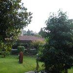 Jardín y Cafetería