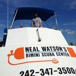 Neal Watson