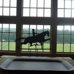 Window Overlooking Meadow