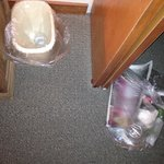 Maid left bag of trash in closet.