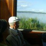 Mirando el paisaje desde el tren