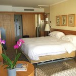 Spacious  and well furnished room