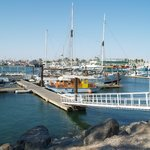 Marina del Viejo Puerto