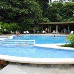 Pachira Pool