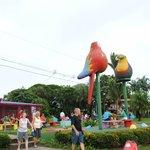 Tortuguero Village tour
