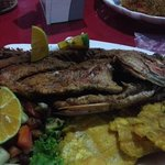 medium whole red snapper