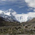 Mount Everest near the base camp