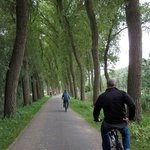 Riding along the Poplars and the canal