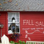 Fall sale at our Farm Shoppe, plant now for spring!