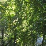 In Herbst sehr schön