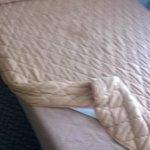 Unpleasant bedding