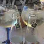 gin-tonic's espectaculares