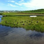 Bahia con patos en Nantucket