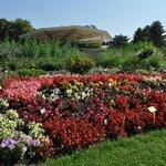 แปลงดอกไม้ต่างๆด้านหน้าสวน