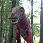 T-Rex @ Dinosaur Gardens