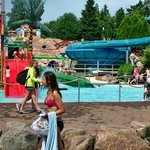 Swimming Pool Fun!