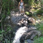 Clear Creek Trail, Cimarron, NM