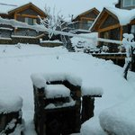 Hermoso despertar con nieve.....