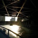 Under the bridge !