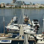 view of marina at the hotel