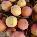 Peaches for good pies....