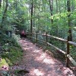 path along the way