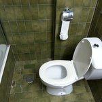 De (vies gekleurde) badkamer
