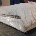 Box springs & comforter