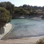 water,clifs,trees and sand